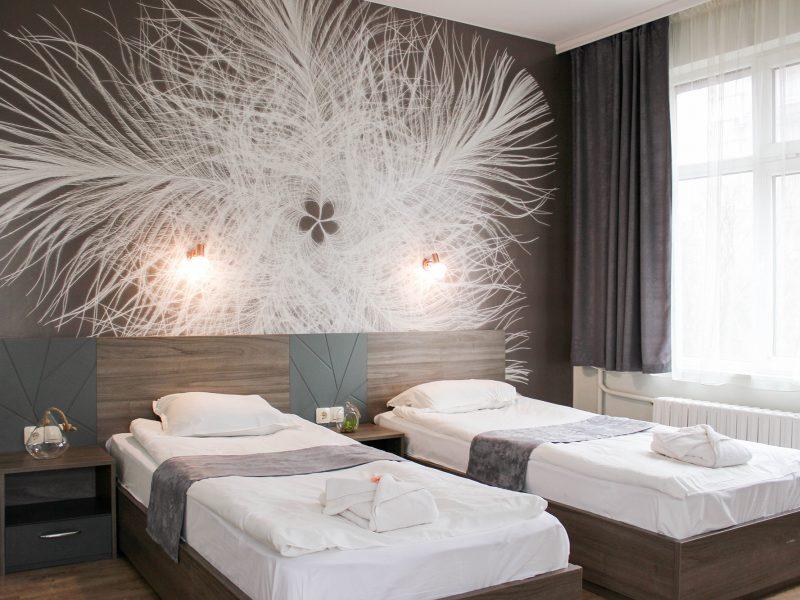 Двойна луксозна стая с отделни легла